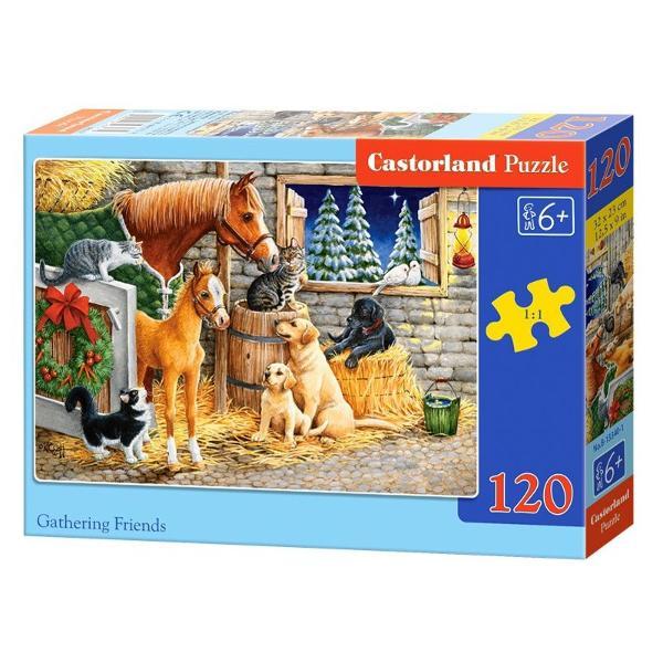 Brand CastorlandCod 13340Num&259;r piese120 bucVârsta6 aniDimensiuni puzzle asamblat32 x 23 cm