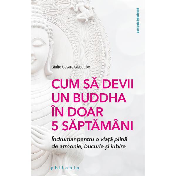 Dincolo de aspectul finit sau infinit al universului de caracterul s&259;u temporar sau etern exist&259; un unic adev&259;r ce trebuie acceptat suferin&355;a face parte din via&539;a noastr&259; Construit&259; în jurul metodei psihologice predate la origine de c&259;tre Buddha &537;i având ca scop transmiterea principalelor înv&259;&539;&259;turi ale budismului pentru eliberarea de suferin&355;&259; lucrarea de fa&539;&259; are mai degrab&259; un