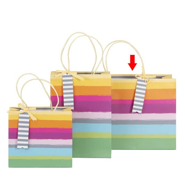 Punga Cadou Dungi Multicolore 22X30X11Cm - 204539 A204542
