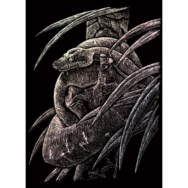 Set gravura pe folie holografica Sarpete invita sa petreci cateva ore in compania celei mai vechi forme de exprimare artistica de cand exista omul pe pamant Placa neagra predesenata in tonuri fine de gri inchis te va ghida in noua ta calatorie poate chiar initiatica Nu stii niciodata ce pasiuni va trezi in interiorul tauAcestSet gravura pe folie holografica Sarpete va