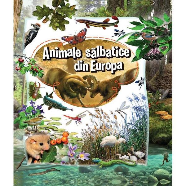 Exploreaz&259; cu noi minunatele &539;inuturi ale continentului european