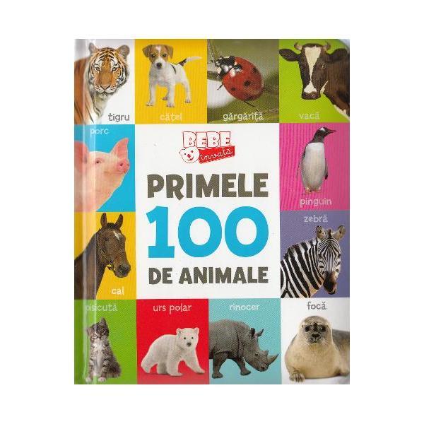 Ghidul p&259;rin&539;ilor Primele 100 de animaleCuvinte noi &537;i imagini extraordinare &8211; aceast&259; carte con&539;ine combina&539;ia ideal&259; pentru a dezvolta vocabularul copilului t&259;u &238;n timp ce micu&539;ul &238;nva&539;&259; despre culori vehicule obiecte folositoare animale &537;i activit&259;&539;i de zi cu zi
