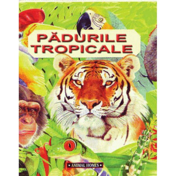 Paduri tropicaleCe este o padure tropicala Unde se afla Cum s-au adaptat animalele la acest mediu de viata Caror pericole trebuie sa le faca fata zilnicInvestigati universul padurilor tropicale pentru a afla raspunsuri la aceste intrebari si nu numai Veti descoperi de asemenea cum oamenii pot distruge aceste ecosisteme si ce se poate face pentru a le proteja