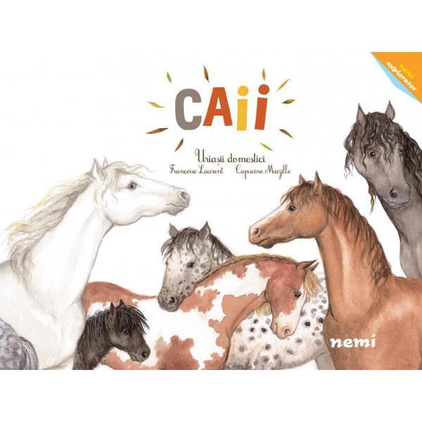 Seria Nemi Explorator cuprinde titluri care exploreaz&259; lumea natural&259; de o manier&259; accesibil&259; &537;i prietenoas&259; Primele patru titluri au vorbit despre vulcani planete stele &537;i via&539;a la poli La serie se adaug&259; titluri despre cai dinozauri câini pisici &537;i p&259;s&259;ri migratoareCe înva&539;&259; micii cititoriOriginea acestei specii &537;i speciile