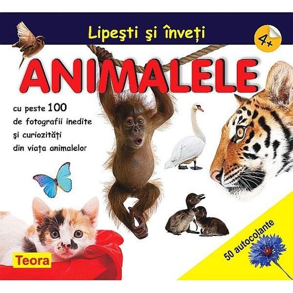 Lipesti si inveti animalele