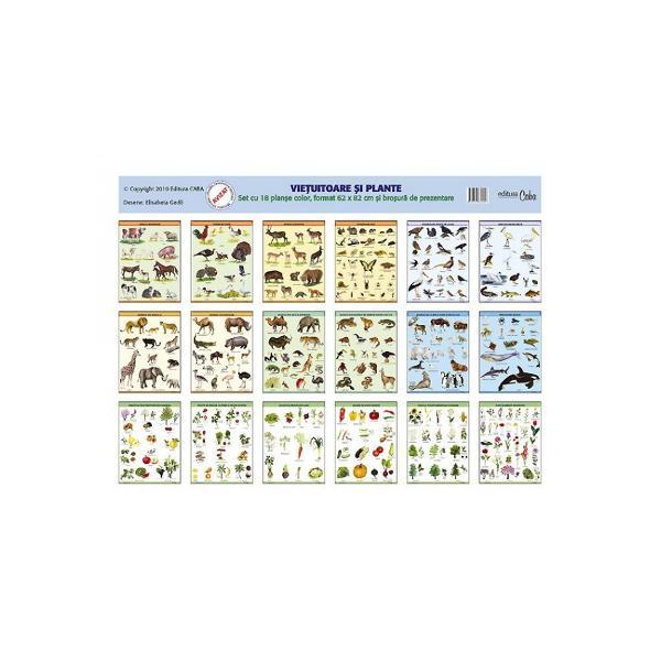 Setul contine 18 planse color de dimensiuni mari 62 x 82 cm in care sunt prezentate imagini cu animale si plante Setul de planse este insotit de o brosura cu 96 de pagini in care gasiti scurte descrieri pe intelesul copiilor ale animalelor si ale plantelor In cazul animalelor am accentuat cateva caracteristici mod de hranire mediu de viata care animale sunt pe cale de disparitie si ocrotite de lege daca sunt folositoare sau daunatoare cum s-au adaptat
