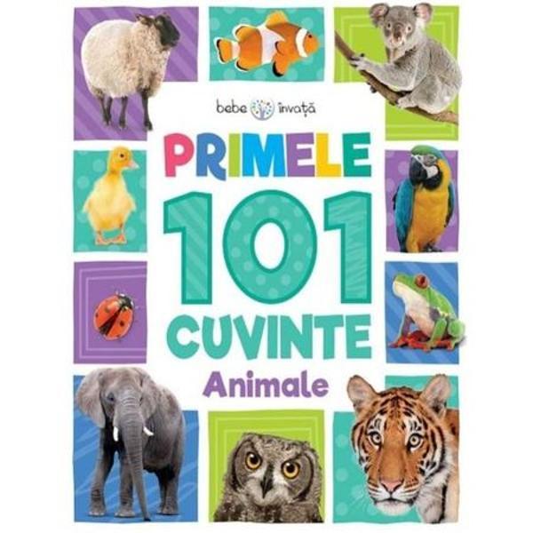 Copiii vor fi fascinati de ilustratiile incantatoare din Primele 101 cuvinte Animale Aceasta serie captivanta ii invata pe cei mici despre lumea inconjuratoare ajutand la dezvoltarea vocabularului lor de la o varsta frageda