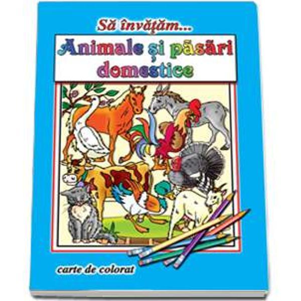 Sa invatam Animale si pasari domesticeIlustrator  Dana PopescuNumar pagini  16Editura  Roxel CartFormat finit  A4 210  295span stylecolor