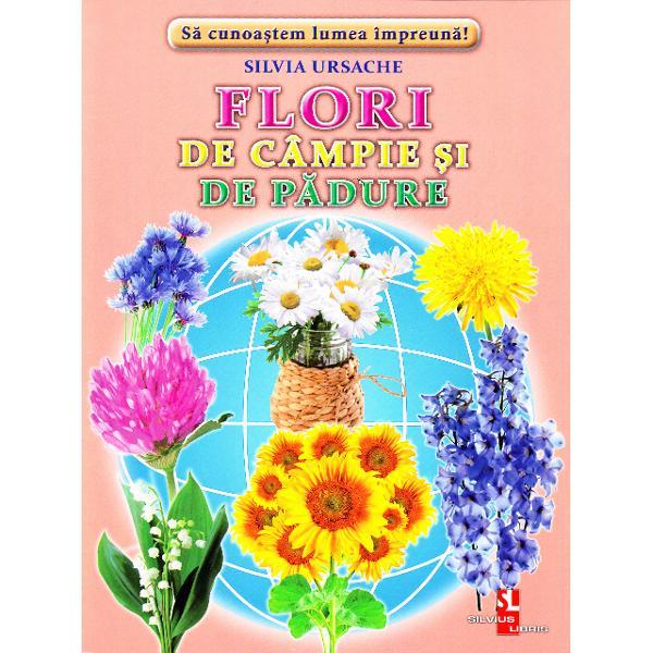 Acest set contine 16 cartonase cu imagini color si texte informative Aici vei intalni• Albastreaua • Calomfirul • Clopotelul • Cicoarea • Coada-soarecelui • Nemtisorul • Floarea-soarelui • Ghiocelul  Brandusa • Lacrimioara • Lumanarica • Macul • Nu-ma-uita • Papadia • Musetelul Romanita br