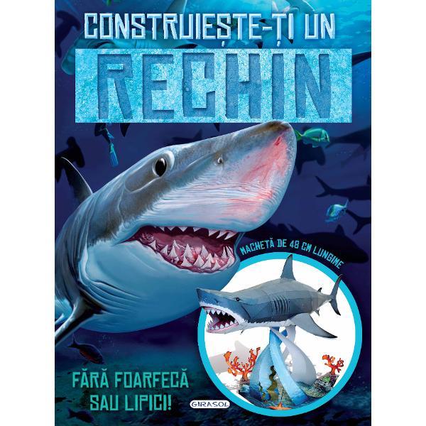 Construieste-ti un rechin