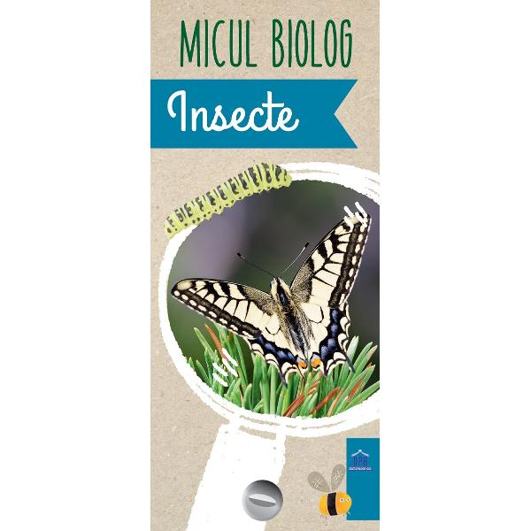 Insecte Fluturi molii gândaci albine libelule etc sunt insecte pe care le-ai întâlnit în natur&259; Dar ce &351;tii despre ele &350;tii unde tr&259;iesc cu ce se hr&259;nesc cum se dezvolt&259; ce fac în perioada de iarn&259; Vei afla informa&355;ii deosebite Cu ajutorul jetoanelor din seria Micul biolog înve&355;i într-un mod pl&259;cut lucruri noi pe care apoi î&355;i vei dori