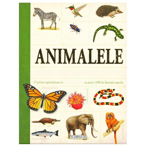 O privire cuprinzatoare in lumea animalelor cu peste 1000 de ilustratii superbe Enciclopedia de fata sursa valoroasa de informatii atat pentru scolari cat si pentru adulti se remarca prin forma succinta clara usor de citit si plina de ilustratii deosebite