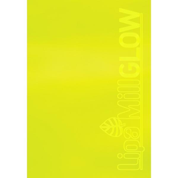 Caiet A4 disctando 40 file Glow - gramaj 75 gmp culoare fuchsia  verde  galben  portocaliu dimensiune A4 40 paginiCaiet A4  Dictando cu licenta Mar Mar colectia Glow este recomandat pentru baieti fete si adolescentiCaracteristiciGramaj75 gmptd