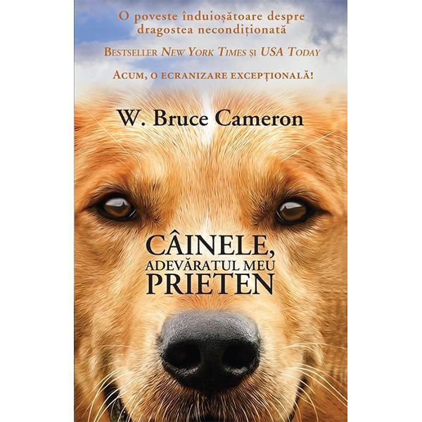 """""""Câinele adev&259;ratul meu prieten"""" propune povestea impresionant&259; a unui suflet de câine care în diferitele sale încarn&259;ri î&351;i caut&259; asiduu menirea Compozi&355;ional romanul este o bijuterie deoarece naratorul s&259;u este chiar câinele care-&351;i prive&351;te cu duio&351;ie atât semenii cât &351;i pe oamenii care-l înso&355;esc în marea sa c&259;l&259;torie O poveste"""