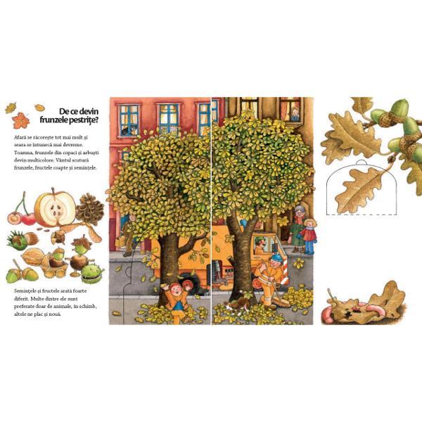 Când vine prim&259;vara Ce fructe delicioase apar vara De ce î&537;i schimb&259; frunzele culoarea toamna &537;i ce fac animalele toat&259; iarna Prim&259;vara vara toamna &537;i iarna – fiecare anotimp î&537;i are caracteristicile specifice iar copiii au foarte multe de descoperitHai s&259; vedem povestea unui m&259;r de exemplu Prim&259;vara înflore&537;te vara ne ofer&259; umbr&259; iar toamna ne d&259; cele