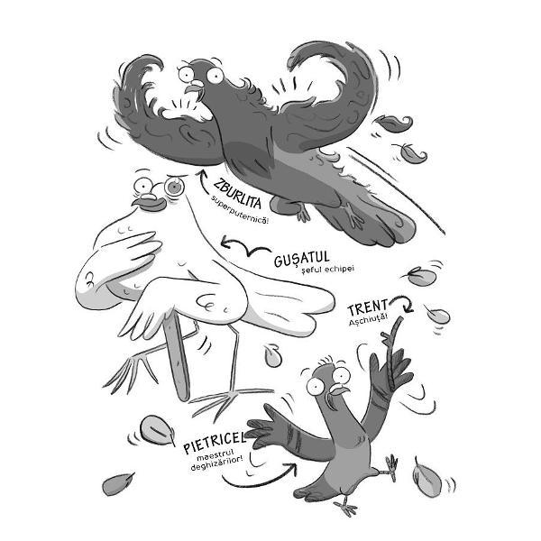 Adevaratii porumbei sunt o echipa care lupta cu infractorii Din echipa fac parte Zburlita Sucita Tovarel si Gusatul iar in fruntea lor e Pietricel impanatul maestro al deghizarilor Dezleaga mistere Afla de ce au disparut firimiturile Cine rapeste liliecii Si cum pot Adevaratii Porumbei sa evite un dezastru inainte de ora mesei Te-ai intrebat vreodata de ce porumbeii se comport atat de ciudat Asta pentru ca sunt pe urmele ticalosilor si va salveaza fundul de orice